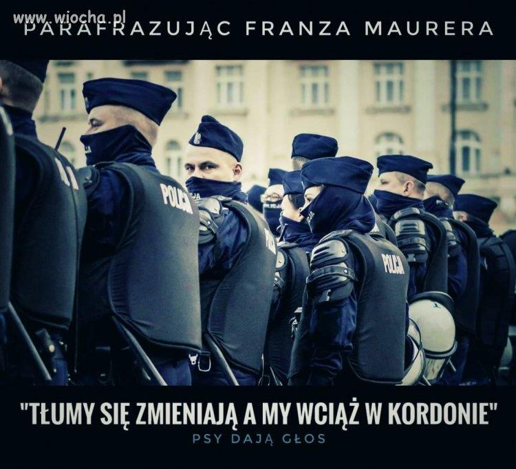 Mem-z-policyjnego-fejsa-psy-daja-glos
