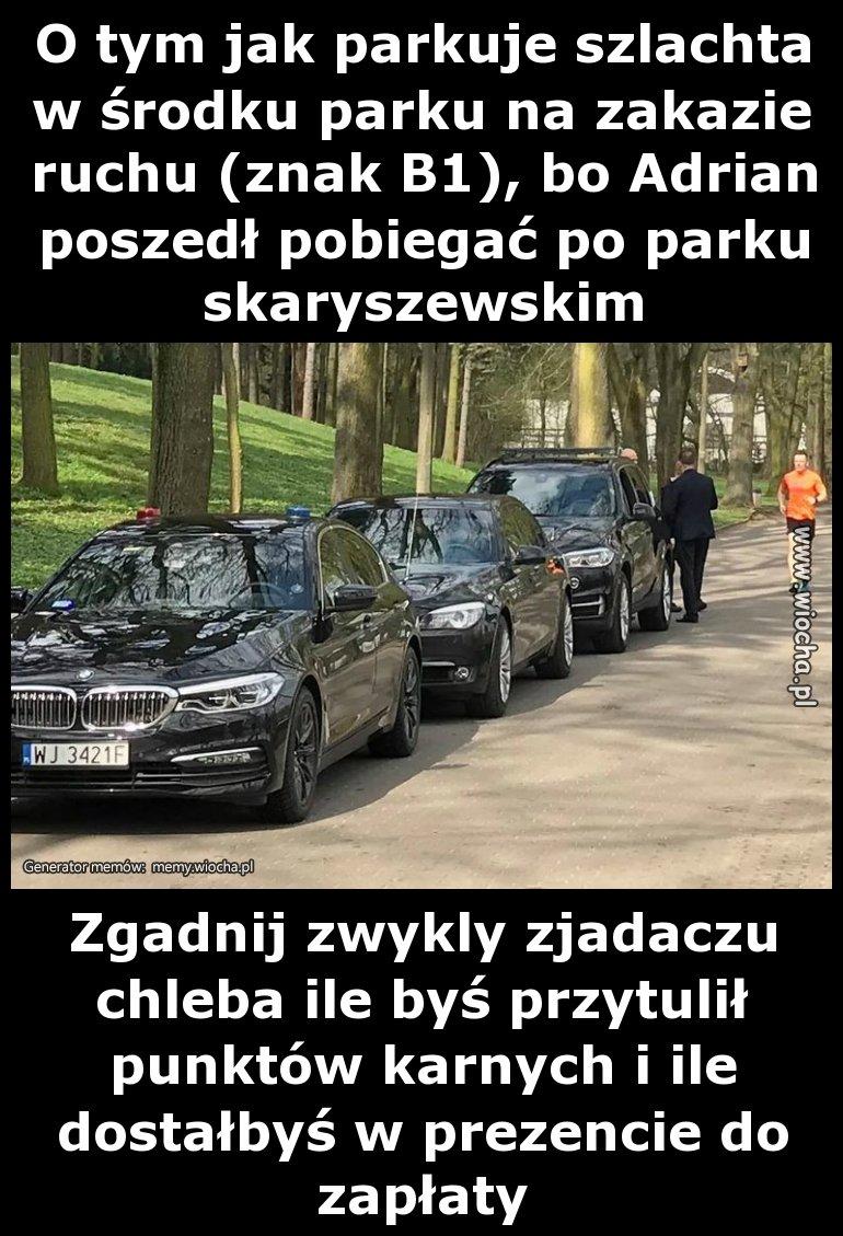 O-tym-jak-parkuje-szlachta-w-srodku-parku