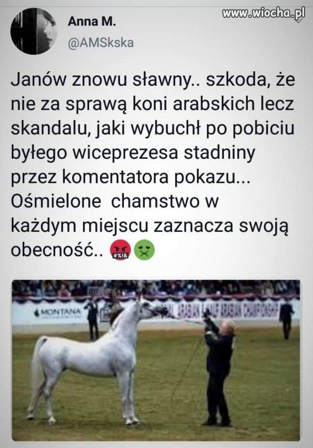 Janow