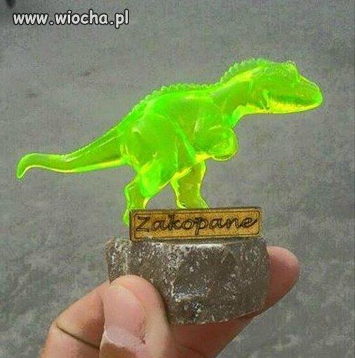 Byc-w-Zakopanem-i-nie-zobaczyc-Dinozaura
