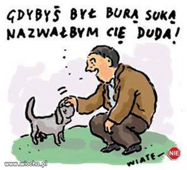 A-jak-sie-wabi-wasz-pies