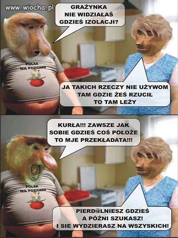 Z-zycia-Polaka