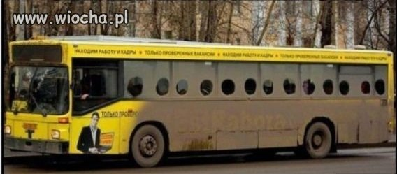 Czyste linie autobusowe
