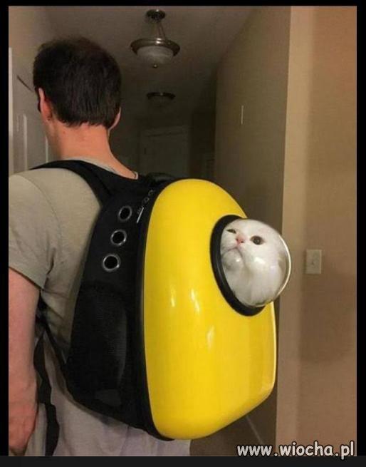 Plecak-do-spacerow-z-kotem
