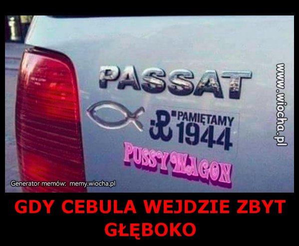 GDY-CEBULA-WEJDZIE-ZBYT-GLEBOKO