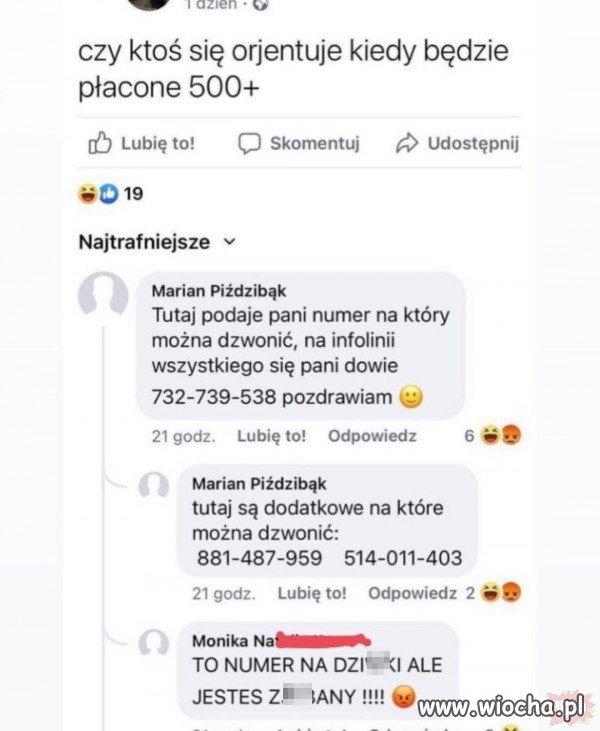 Pomocny-Gosc