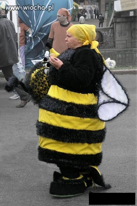 Krolowa-pszczol