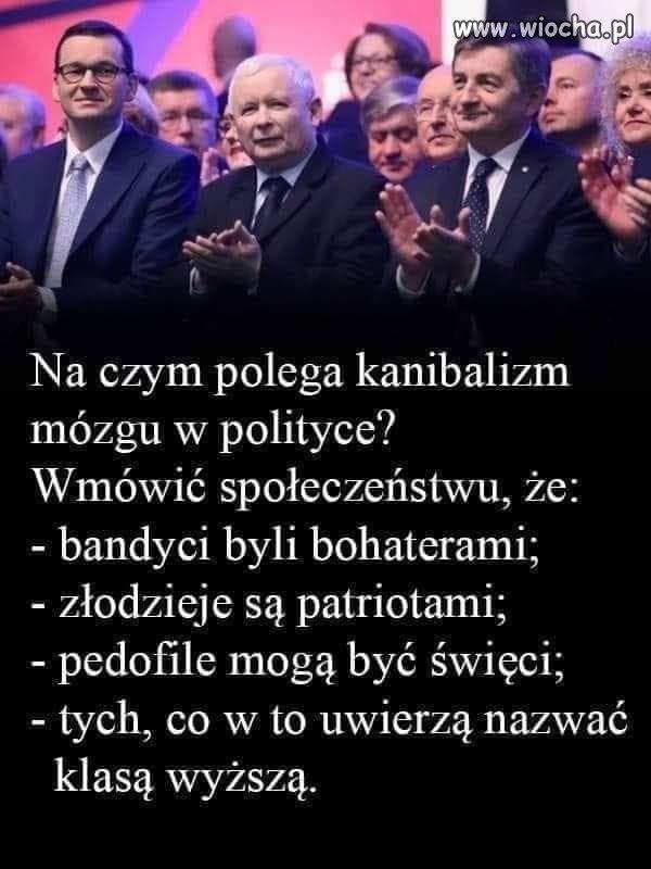 Tak-dziala-PiS