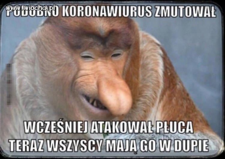 Koronaswirus