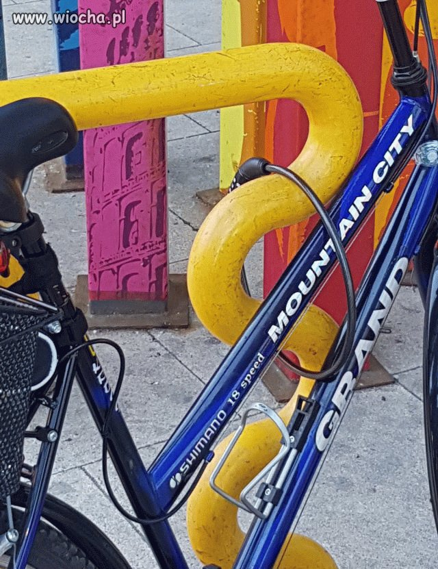 "Cyklista ""geniusz"""