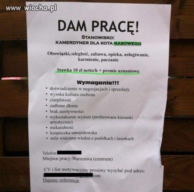 Dam-prace