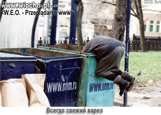 Przegladarka-WWW