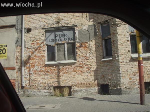 Pub---Luzny-kalafior