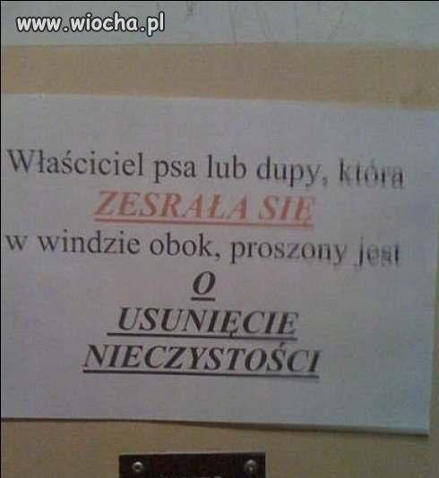 Nieczystosc-w-polskiej-windzie--takie-rzeczy