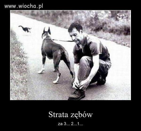 I-po-zebach