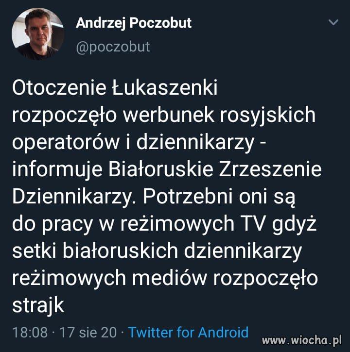 Wyslac-tam-Holecka-Ziemca-Ogorek-Jachimowicza