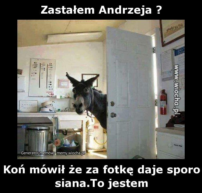 Zastalem-Andrzeja