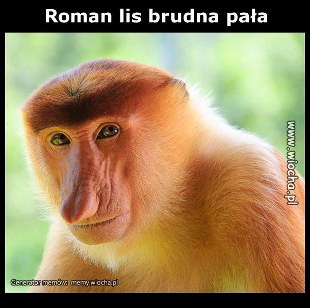 Roman-lis-brudna-pala