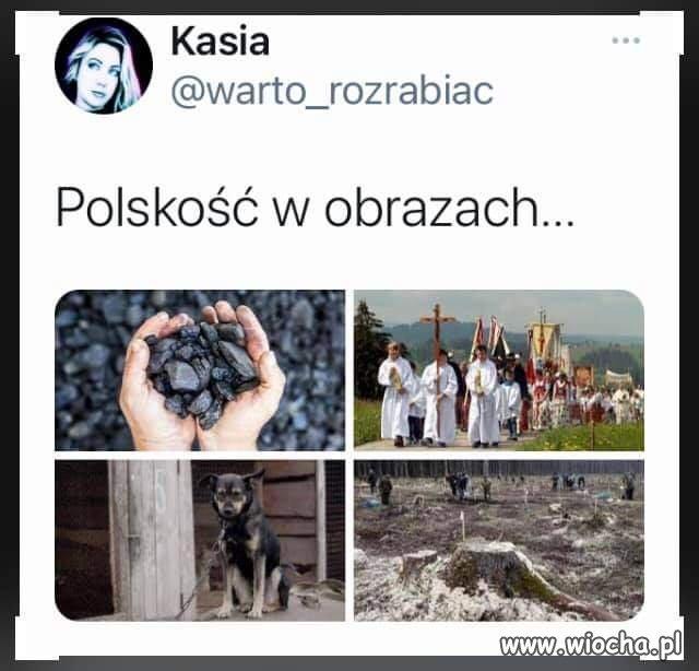 Polska-w-pigulce
