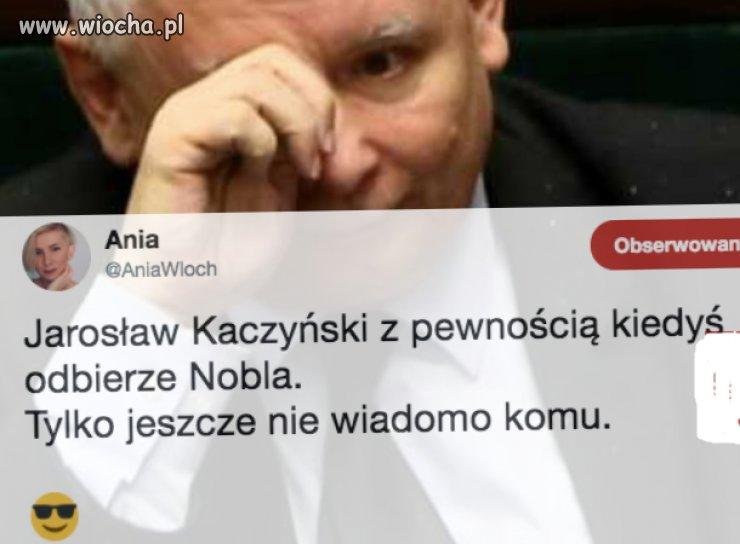 a-kandydatow-ma-duzo