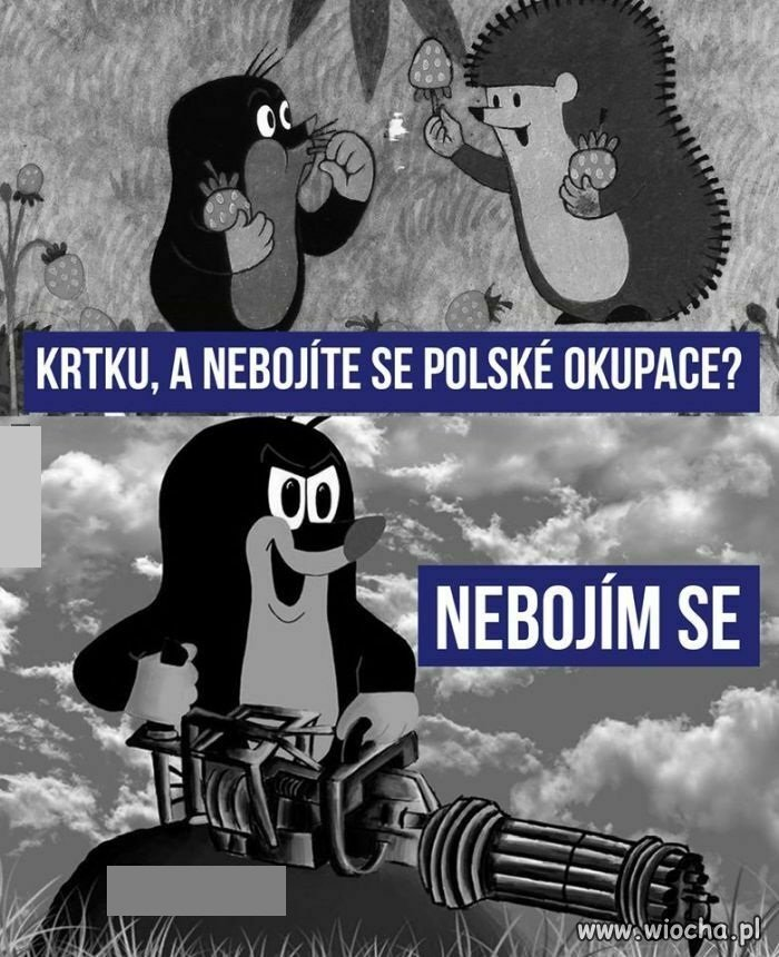 Czesi-sie-nie-boja