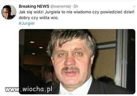 Wista-wio