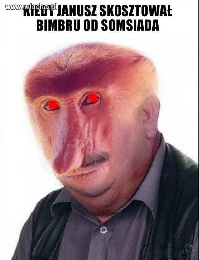 Janusz degustator