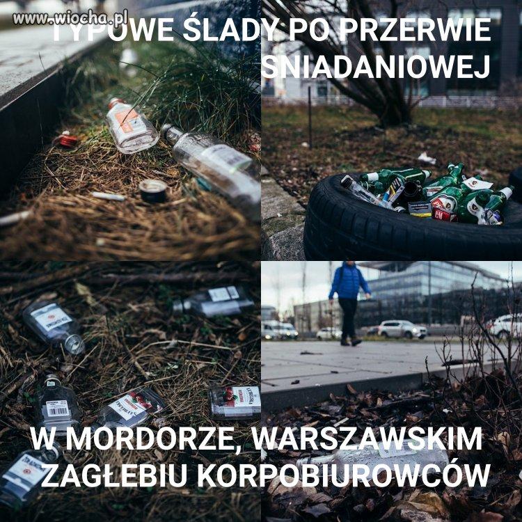 Polacy i ich korpokultura