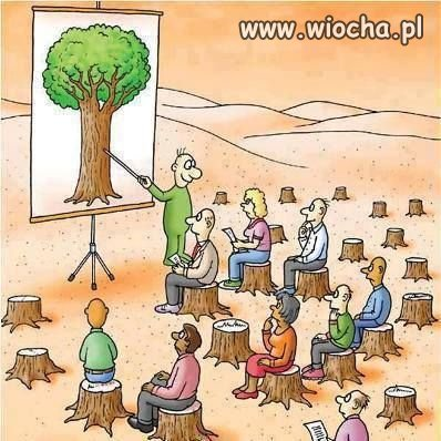 A co to drzewa?