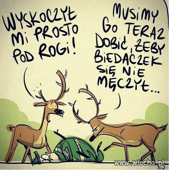 Nosil-wilk-wilka-poniesli-i