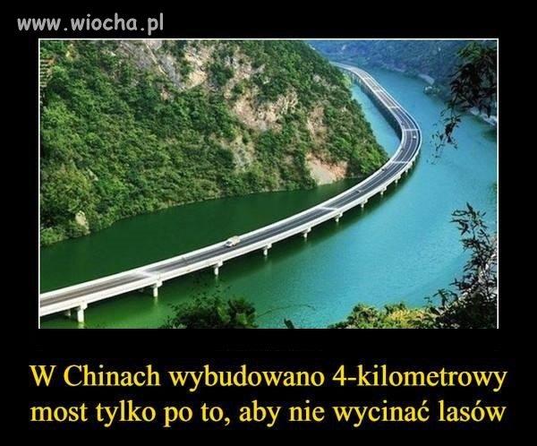 A w Polsce