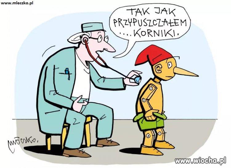 Korniki