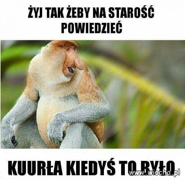 zyj-tak-zeby