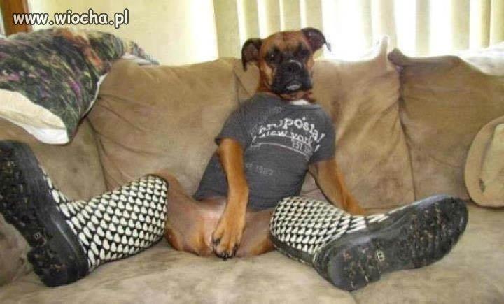 W gumiakach na kanapie