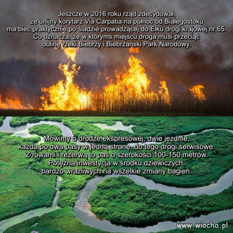 Jako-przyczyne-wladze-wskazuja-wypalanie-traw