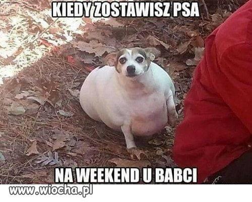 Kiedy zostawisz na weekend