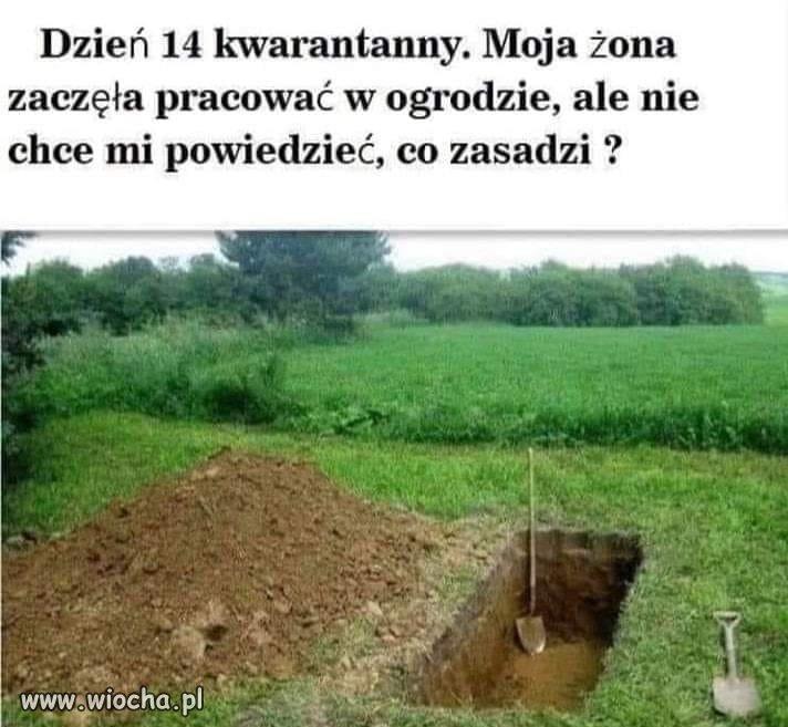 Bolesna kwarantanna