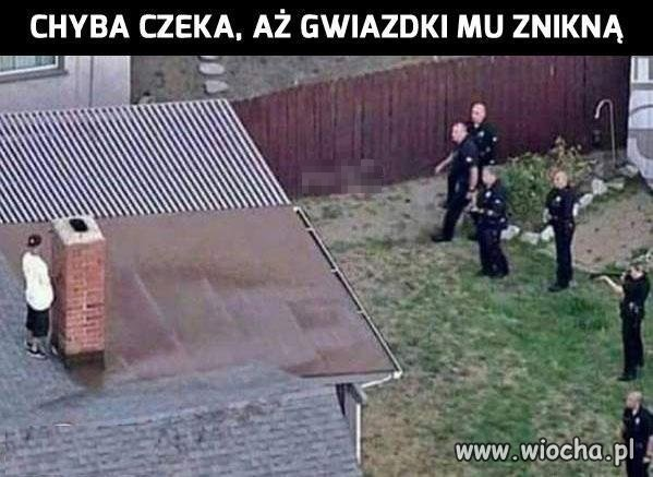 Za-duzo-GTA
