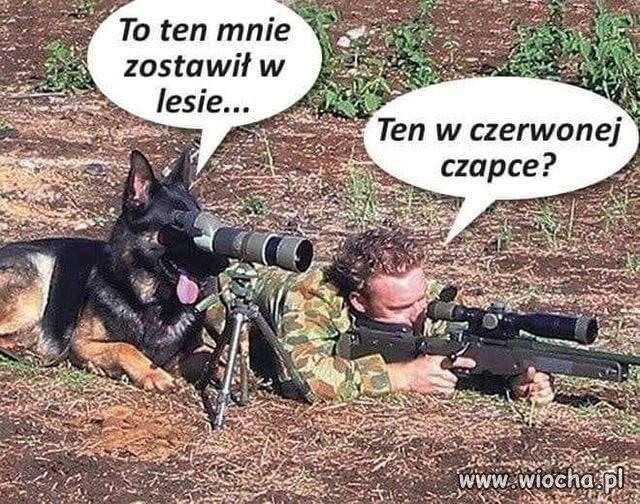 Na polowaniu