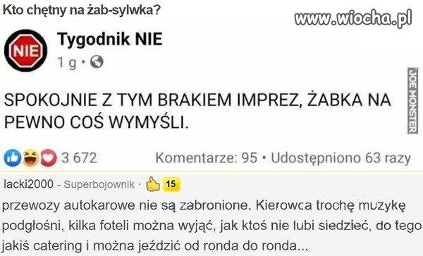 Sylwester-z-Zabka