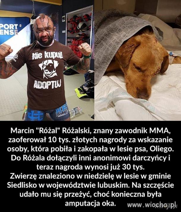 Respekt-dla-Rozala