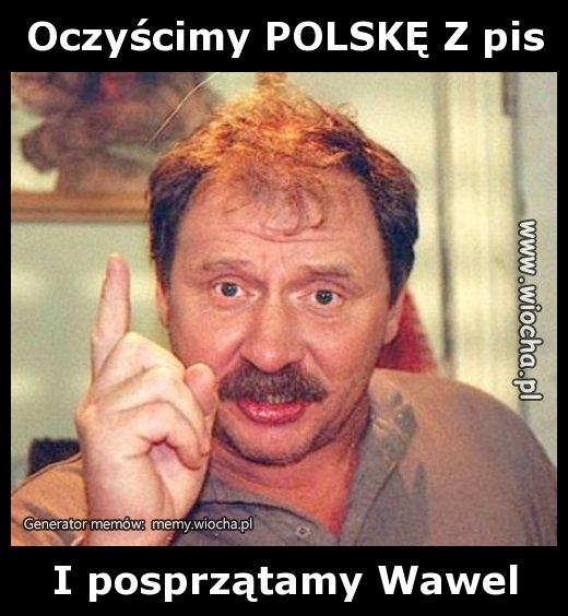 Oczyscimy-POLSKE-Z-pis