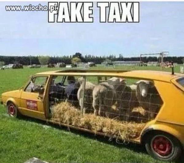 Fake taxi.