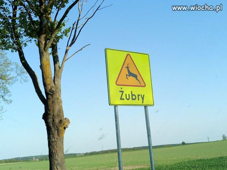 A taki znak: