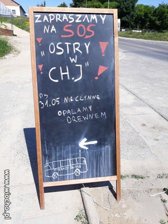 Pizza-dla-wyzszych-sfer-w-Gdansku