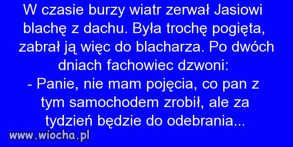 Polscy-specjalisci