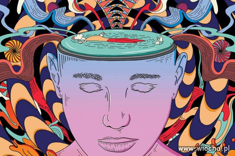 Gdy-masz-wode-zamiast-mozgu