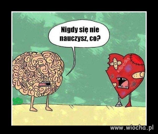 Serce-i-umysl-dwa-rozne-swiaty