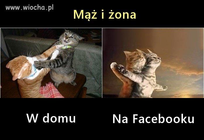 Maz-i-zona
