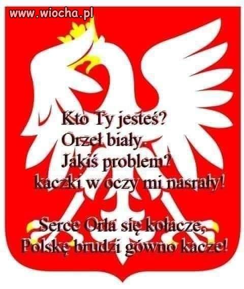 Nowy-wierszyk-dla-Polakow